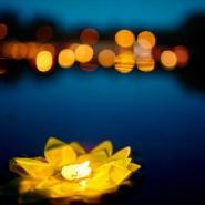 Фестиваль водных фонариков «Мечта близко» 2018 фотографии