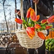 8 марта в московских парках фотографии