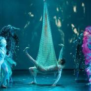 Театрально-цирковое шоу «Человек-амфибия» фотографии
