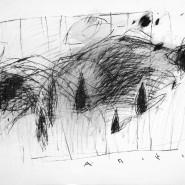 Выставка «Закрытый сад. Александр Пестерев» фотографии