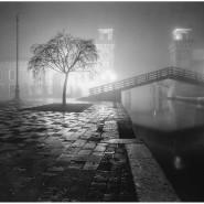Выставка «Portfolio #1» фотографии