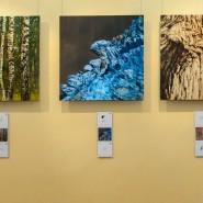 Выставка «Белый тигр Запада идет на Восток» фотографии