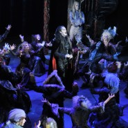 Мюзикл «Бал вампиров» фотографии