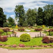 Открытие Малого розария в «Сокольниках» 2016 фотографии