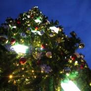 Новый год в Измайловском парке 2018 фотографии