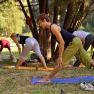 Йога в парках фотографии