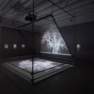 Выставка Мэта Коллишоу фотографии