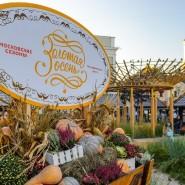 Фестиваль «Золотая осень» 2018 фотографии