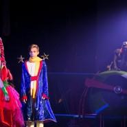 Цирковое шоу «Маленький принц» 2018 фотографии