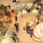 Бесплатное посещение музеев фотографии