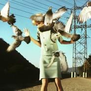 Выставка «Необъяснимое влечение» фотографии