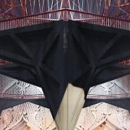 Выставка «Степан Липгарт. Семнадцатая утопия. Архитектурные проекты 2007 –2017» фотографии
