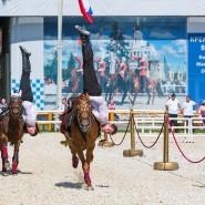 Московский фестиваль конного искусства и спорта 2017 фотографии