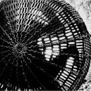 Выставка «Салки» фотографии