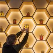 Всемирный день пчел на ВДНХ 2019 фотографии