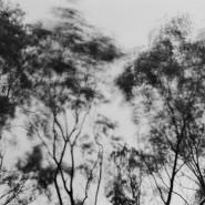 Выставка «Реверс Точка Азия» фотографии