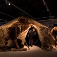 Выставка «Путешествие в Арктику» фотографии