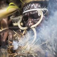 Выставка «Индонезия. Территория вековых традиций» фотографии