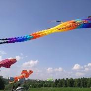 XIV Фестиваль воздушных змеев «Пестрое небо» фотографии