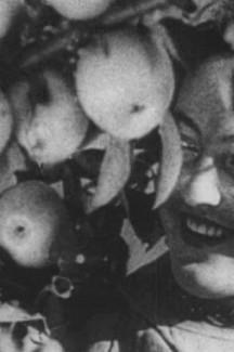 ЖИВОЙ АРХИВ: Абстрактные формы фильмов и их применение