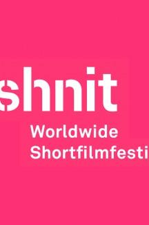Программа Shnit Worldwide Shortfilmfestival «Worldwide Competition 2»