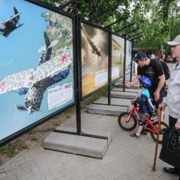 Выставка «Русская авиация – от прошлого к будущему»