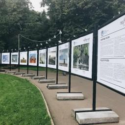Выставка «Животные России»