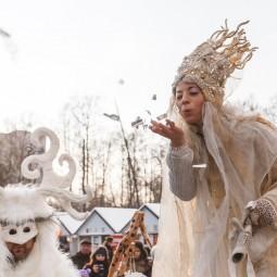 Новогодняя ночь 2017 в Гончаровском парке