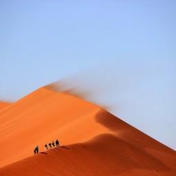 Выставка «Вдоль Великого Шелкового пути. С Запада на Восток»