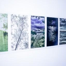 Выставка «Здесь больше нет воды»