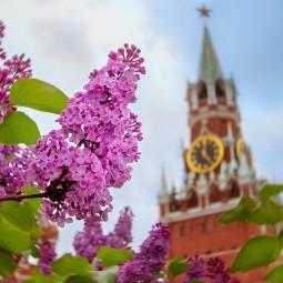 Топ-10 лучших событий навыходные с 1 по 5 мая вМоскве