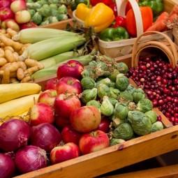 Праздник Урожая на Летнем рынке «Фермерия»