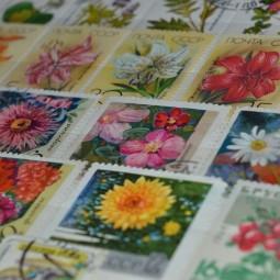Выставка «Искусство почтой»