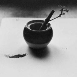 Выставка «О тишине»