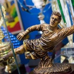 Выставка об истории отечественного футбола
