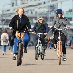 Прокат велосипедов в парках Москвы 2019