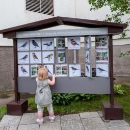 День города в Дарвиновском музее 2021