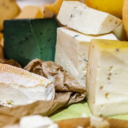 XI Фестиваль сыра на ВДНХ