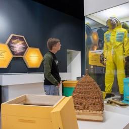 Всемирный день пчел на ВДНХ 2019