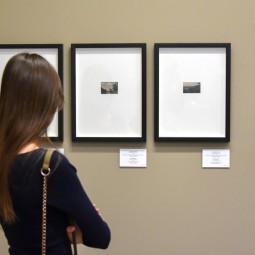 Выставка «Элегия»
