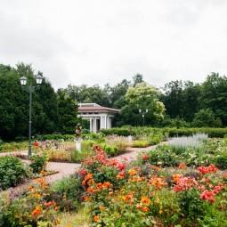 Открытие большого розария в парке «Сокольники» 2020