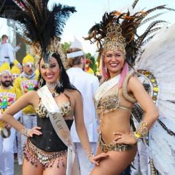 Бразильский карнавал в Измайловском парке 2019