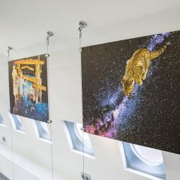 Выставка «Доказательство человечности»