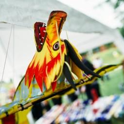 Фестиваль воздушных змеев «ЛеТатлин №4» 2021
