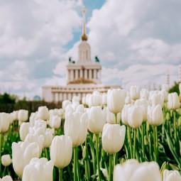 День России на ВДНХ 2020