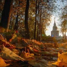 Топ-10 лучших событий навыходные 10 и 11 октября вМоскве