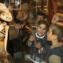 113-летие Дарвиновского музея