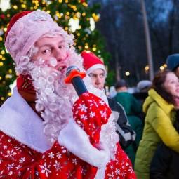 Новогодняя ночь 2019 в Лианозовском парке