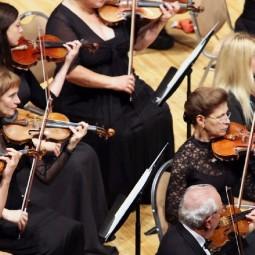 День музыки в Выставочных залах Москвы 2020