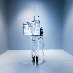 Выставка «Интернет животных»